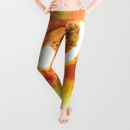TwerkitHazel's Nipple of Venus Leggings