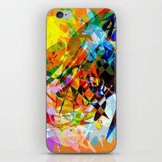 Colors iPhone & iPod Skin
