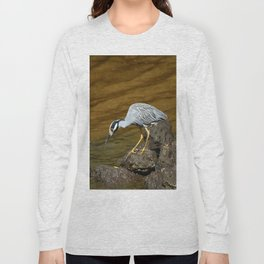 This Looks Very Interesting Long Sleeve T-shirt