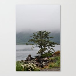 Foggy Mornings in La Push Canvas Print