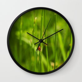 Ladybug in the Jungle Wall Clock