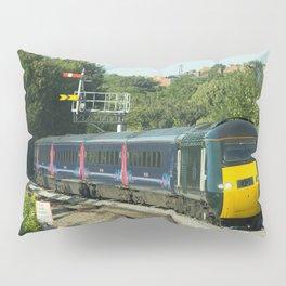 Worcester HST Pillow Sham