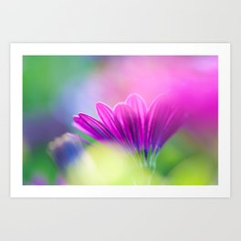 be inspired, creative and in love Art Print