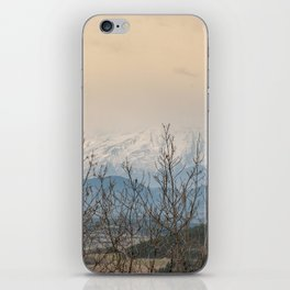 Snowy mountains through the trees iPhone Skin