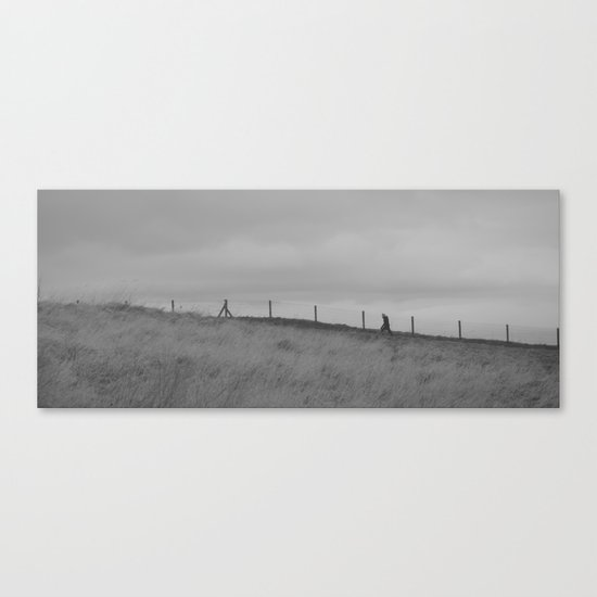 clear out the cobwebs... Canvas Print
