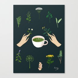 Magical Herbal Tea Canvas Print