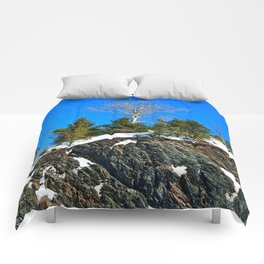 The Tree on the Cliff Comforters