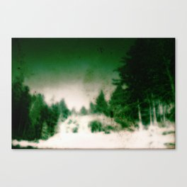 Forest Deep Canvas Print