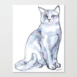 Mad Cat Canvas Print