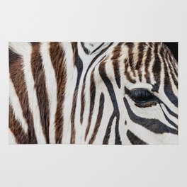 EYE OF THE ZEBRA Rug