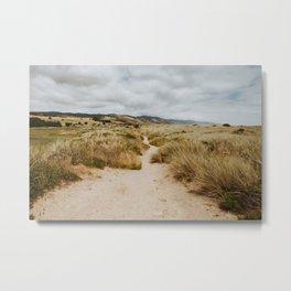 Path at Point Reyes Metal Print