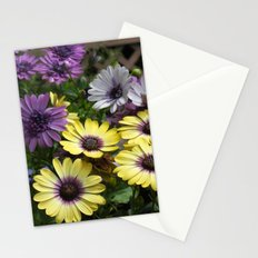Yellow and Purple African Daisies Stationery Cards