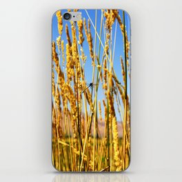 Dragonfly in tall dry grass iPhone Skin