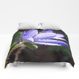 Blue beauty Comforters