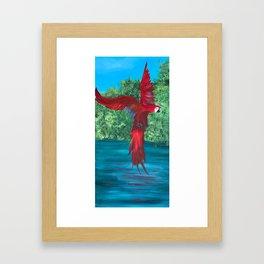 Landing Gear Down Framed Art Print