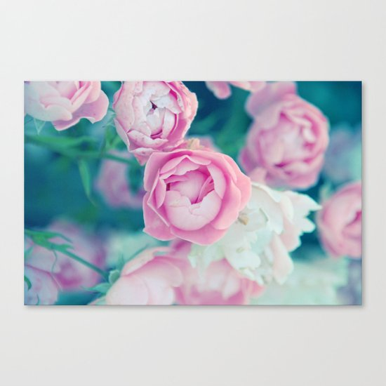 Miss Rose Canvas Print