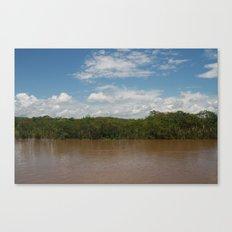 Bright Landscape Canvas Print