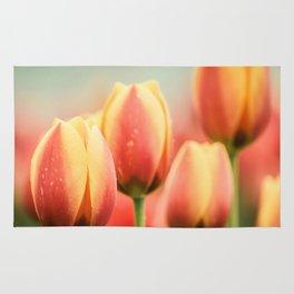 Tulip Rug