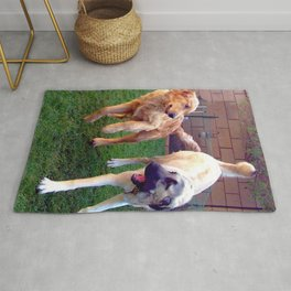 Dogs Playing Rug