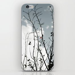 The Last To Fall iPhone Skin