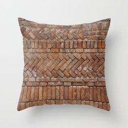 Beautiful Brick Wall Throw Pillow