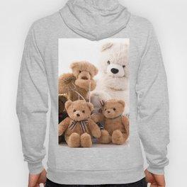 Teddy Bear 001 Hoody