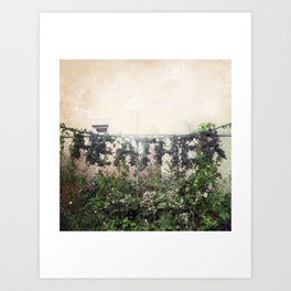Locals Only - Vancouver, BC Art Print