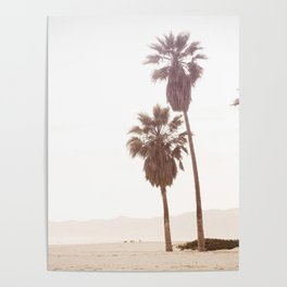 Vintage Summer Palm Trees Poster