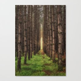 A Morning Walk Canvas Print