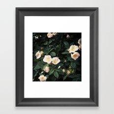 Snowwhite Framed Art Print