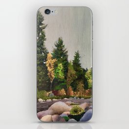 Upstate New York Gorges iPhone Skin