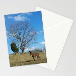 EEEEoonk. Stationery Cards
