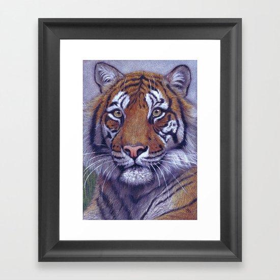Tiger - portrait CC118 Framed Art Print