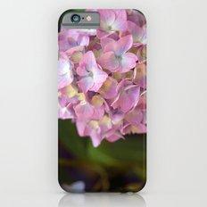 Hydrangea II iPhone 6s Slim Case