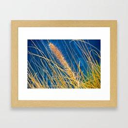 Golden Grass Framed Art Print