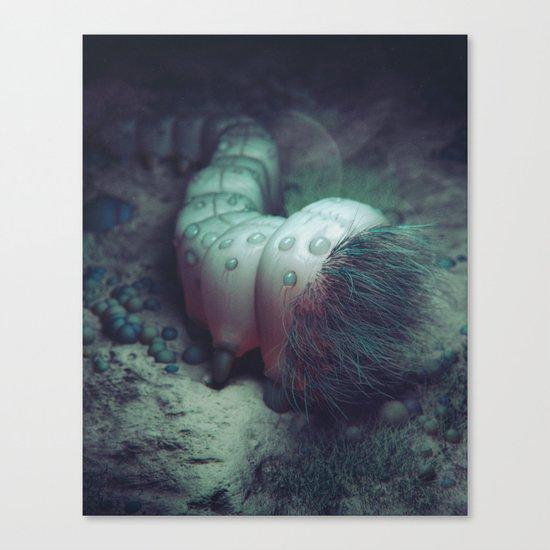 PARACYTE (everyday 08.03.16) Canvas Print