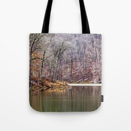 early spring in Ohio Tote Bag