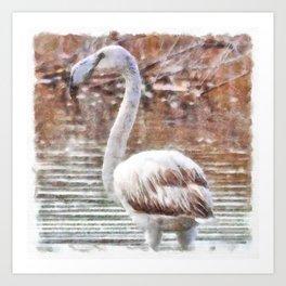 Flamingo Feathers Watercolor Art Print