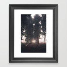Forests Fog Framed Art Print