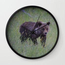 Grizzly cub learns to hunt Wall Clock