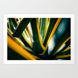 Golden Ivy Art Print