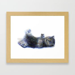cat1 Framed Art Print