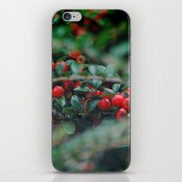 Cotoneaster Berries iPhone Skin