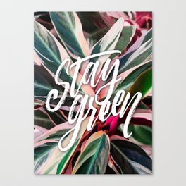 Stay green Canvas Print