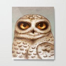 Snow Owl Big Eyes Metal Print