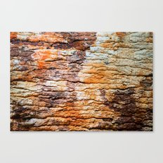 NATURAL WOOD ART Canvas Print
