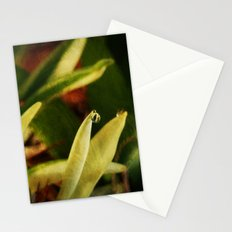 Dew Drop Stationery Cards