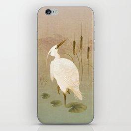 White Heron in Bulrushes iPhone Skin