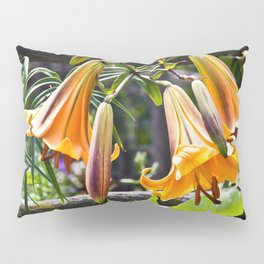 Orange Meadow Lillies Pillow Sham