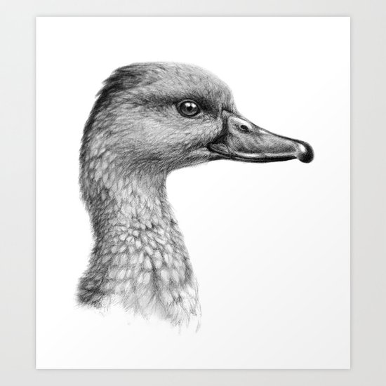 West Indian Tree Duck SK066 Art Print